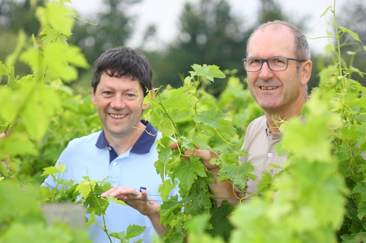 Alain Rotier et Francis Marre