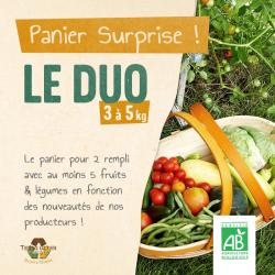 Panier-legumes-Terra-Alter